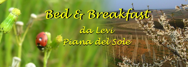 Bed and Breakfast in Monferrato - da Levi, Piana del Sole